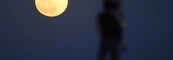 Moon_Man-571x200.jpg